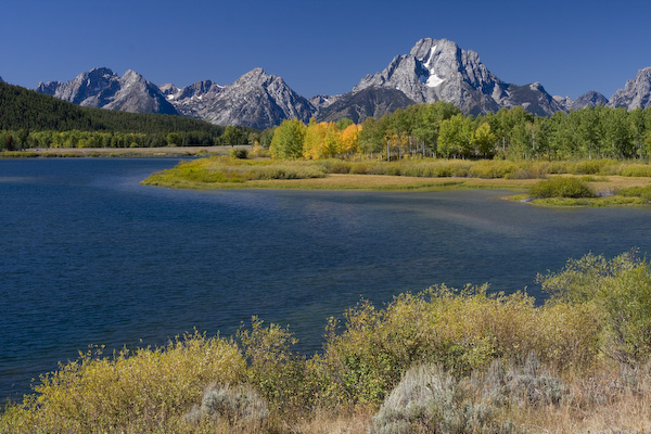 Grand Teton Fall Color