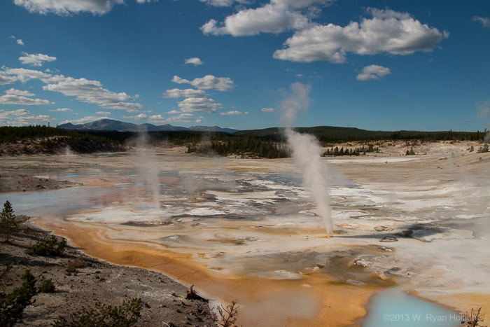 Porcelain Basin in Norris Geyser Basin