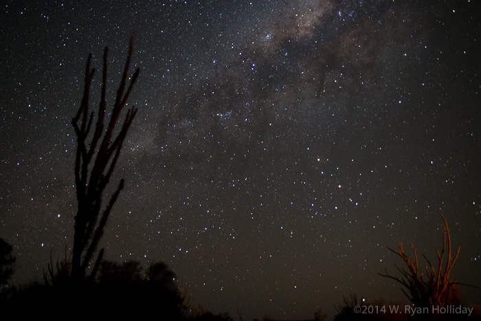 Starry night in Ifaty