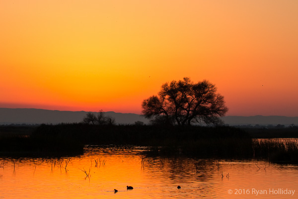 Sunset at the Kern NWR