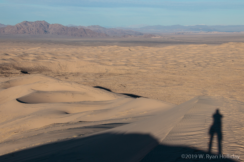 Self-portrait, Kelso Dunes, Mojave National Preserve