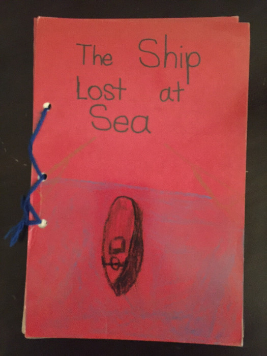 The Ship Lost at Sea
